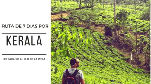 10 Oportunidades de ideas de negocio a pequeña escala en Kerala 2020