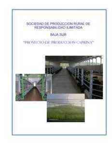 Inicio de una granja de cabras: plantilla de plan de negocios de muestra