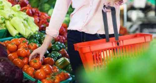 Inicio de una planta de procesamiento de tomate: plantilla de plan de negocios de muestra
