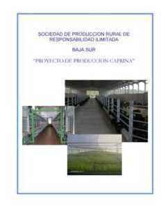 Inicio de una plantilla de plan de negocios de muestra de una empresa productora de piensos para ganado