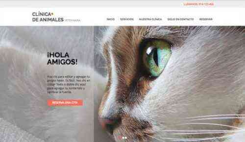 Una muestra de plantilla de plan de negocios de fotografía para mascotas