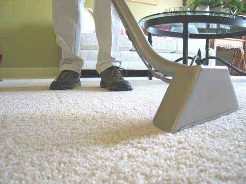 Una muestra de plantilla de plan de negocios de limpieza de alfombras