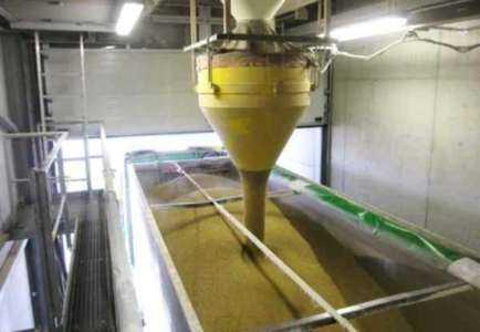 Una muestra de plantilla de plan de negocios de molino de procesamiento de arroz